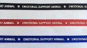 RED NYLON LEASH IMPRINTED WITH ''EMOTIONAL SUPPORT ANIMAL''