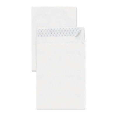 White End Plain Expansion Envelopes (Sparco Plain Open End Tyvek Expansion Envelope , White)