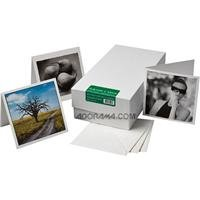 Museo Artist Cards - Square Card - 100 Cards / 100 Envelopes by Museo