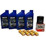 YAMAHA 1.8L HO SHO Oil Change Kit w/Filter FX-HO VXR VXS FZ-SHO FZR FZS 69J-13440-03-00 NGK Spark Plugs Maintenance Kit by Yamaha