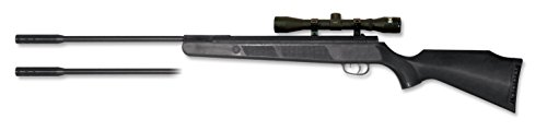 Beeman, Kodiak X2 DC AW Air Rifle Dual Caliber