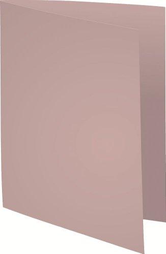Exacompta 410009E Aktendeckeln Packung, 100 Stück, aus Recycling Karton 250 g, foldyne forever, Din A4, grau