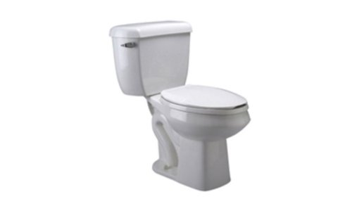 - Zurn Z5560-BWL Toilet Bowl Only, ADA, Elongated Pressure Assist, for Two-Piece Toilet