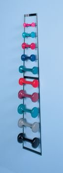 DSS Wall Mounted Dumbbell Rack
