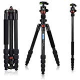 Sanwu Lightweight Carbon Fiber DSLR Tripod, 360 Ball Head, 65' Ultra Compact for Traval and Work,for Canon, Sony, Nikon,...