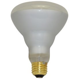 Fl Philips Lamps - 8