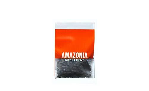 ADA PrakashAquarist Aquasoil Amazonia Version 2 9L