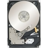 Seagate 1 TB Constellation Sata 7200 RPM 64 MB 2.5-Inch ST91000641NS (Black)