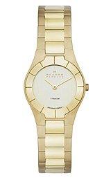 Skagen Titanium Bracelet - Skagen Black Label Two-Hand Titanium - Gold-Tone Women's watch #SKW2105