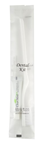 Bulk Disposable Hotel Toothbrush with Toothpaste Dental Kit (Case of 500)