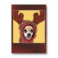 Chihuahua Puppy Dog Reindeer Costume ~ Box 12 Holiday Christmas Cards