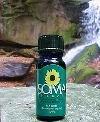 Kanuka Oil by SomaTherapy 0.5oz.