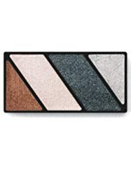 Mary Kay Mineral Eye Color Quad in Black Ice – 075234