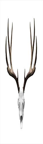 Antlers Decor 3D Decorative Film Privacy Window Film No Glue,Frosted Film Decorative,A Deer Skull Skeleton Head Bone Halloween Weathered Hunter Collection Decorative,for Home&Office,17.7x59Inch]()