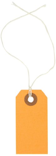 Aviditi Pre-Strung Shipping Tag, 13 Point Cardstock, 2-3/4