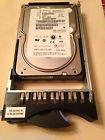 IBM 71P7391 IBM 146.4 GB 10 000 rpm Ultra320 SCSI hot-swap SSL hard drive