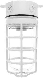 (RAB VX100DGW Vaporproof 100 Ceiling 4 Box 1/2 - White Color W/ Gl Globe Cast Gd)