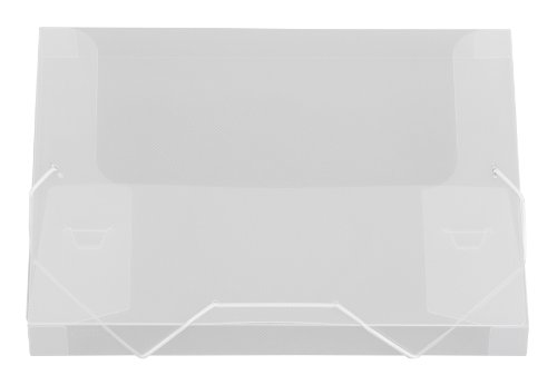 Lion File-N-Tote Plastic Document File, 13 x 9-7/8 Inches, 1 Inches capacity, Clear, 1 File (45100-CR)