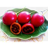 tamarillo - cyphomandra betacea - 25 Seeds Tree Tomato - Vegetables/Fruits ()