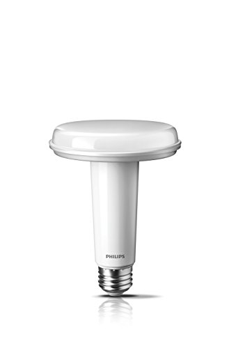 New Flat Led Light Bulbs in Florida - 3