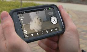 Motorola Scout 1 pet monitor camera