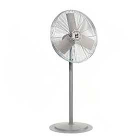 TPI 30 Pedestal Fan Head Non Oscillating, 1/3 HP, 1 PH