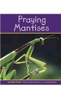 Praying Mantises (Insects) pdf epub