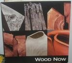 Download WOOD NOW Craft Alliance Wood Turning Center 2006 PDF