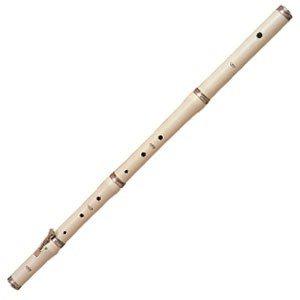 Rhythm Band School Children Musical Instruments Stanesby Jr Flute/Hard Case