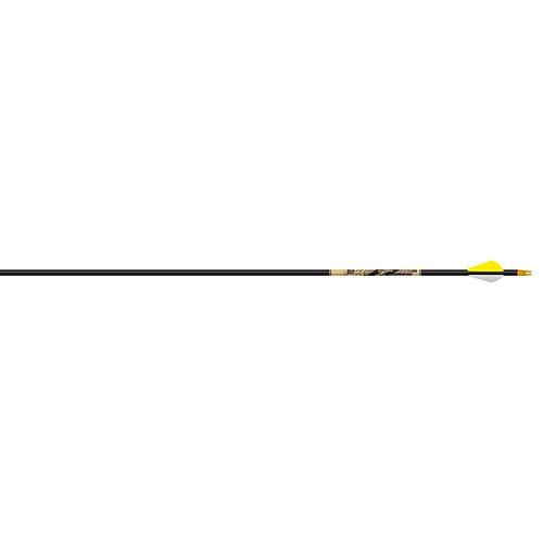 beman carbon arrows - 7