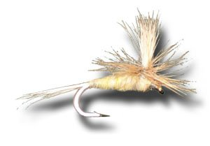 Parachute Pale Morning Dun Fly Fishing Fly - Size 16 - 3 Pack