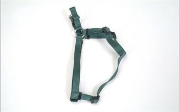 Comfort Wrap Adjustable Dog Harness Hunter Green 20 to 32 Inches Girth with a Width of 3/4 - Adjustable Hunter Harness Green