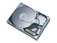 (6Y080P0 Maxtor DiamondMax Plus 9 Hard Drive 6Y080P0 )