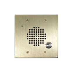 DoorBell Fon DP28 Extra Door Station 2-Gang Masonry Box Mount Brass (DP28-NBF)