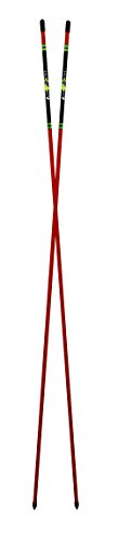 A Swing Alignment Rods 2-Pack by David Leadbetter (MoRodz) - Red