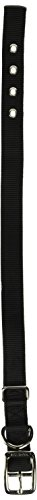 Hamilton Double Thick Nylon Deluxe Dog Collar, 1-Inch by 22-Inch, Black