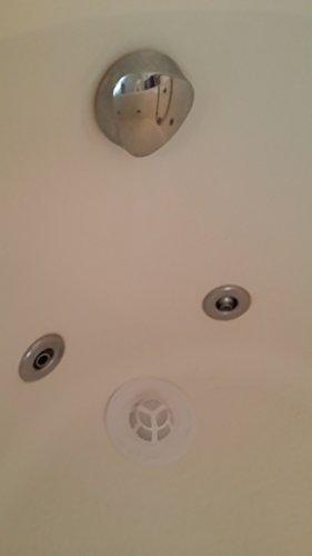 Amazon.com: Drain Hair Catcher Cover - Shower Sink Bathtub Kitchen ...