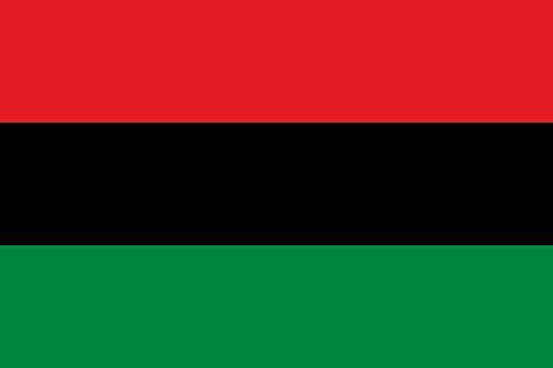 Shoe String King SSK Black Power - African American Outdoor Flag - Black Lives Matter Banner - Large 3' x 5', Weather-Resistant Polyester