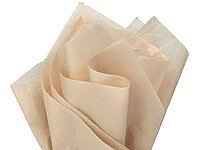 Bulk Parchment Beige Tissue Paper 20 Inch x 30 Inch - 48 XL Sheets (Colored Parchment Paper)