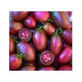 Tomate 'Ukranian Purple' 10 Samen