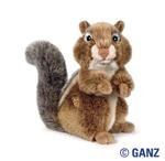 Webkinz Chipmunk Signature October 2010 Release + Free Licensed ANIMAL PLANET