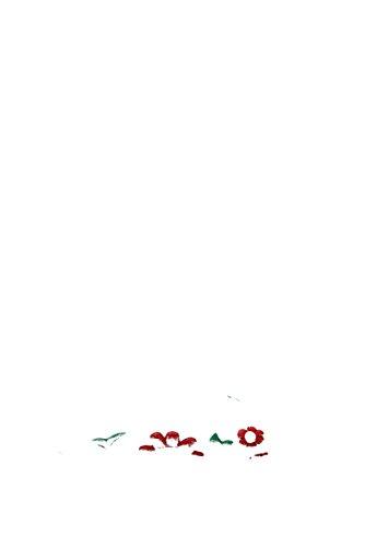 Prada Prada Mules Mules pour Femme pour Bianco Femme UUtxBr
