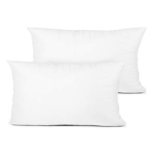 Edow Throw Pillow Insert, Set of 2 Hypoallergenic Down Alternative Polyester Decorative Pillow, Cushion,Sham Stuffer. (White, 12x20)