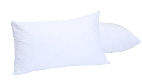 Set of 2 White Clear Fresh Down-like Pillows - Recycled, Env
