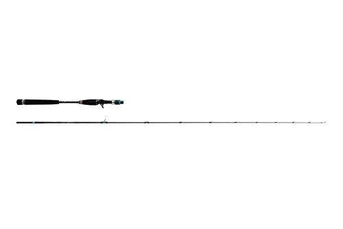 Abu Garcia(アブガルシア) ロッド SaltyStage KR-X ライトジギング SXLC-632-120-KR
