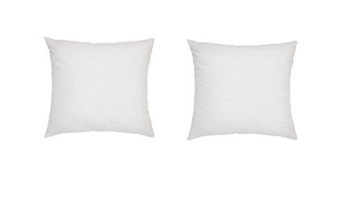 Web Linens Inc - Two Square Polyester Pillow Inserts with Two Zippered Covers - 24 x 24 Inch - European Square Pillow Shams
