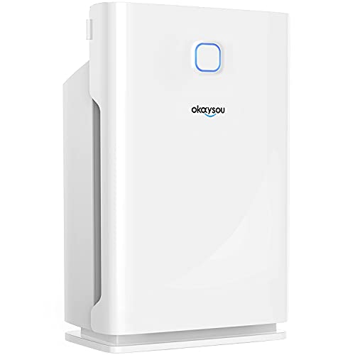 Okaysou Smart Air Purifier with Washable 3 Filters, Medical Grade H13 True HEPA, 5-in-1 Large Room Cleaner for Pets…