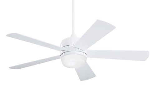 Modern Outdoor Ceiling Fan With Light in US - 6