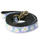 Up Country Daisy Dog Lead, 4-Foot, Narrow Width