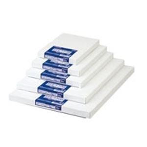 ジョインテックス ラミネートフィルム A3 500枚 K004J-5 生活用品 インテリア 雑貨 文具 オフィス用品 その他の文具 オフィス用品 [並行輸入品]   B014PNWE6U